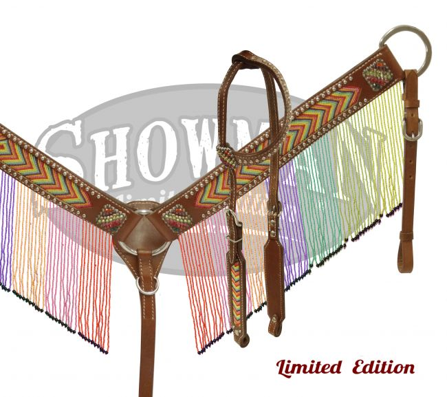 LIMITED EDITION  Rainbow beaded fringe headstall and breast collar set-LIMITED EDITION  Rainbow beaded fringe headstall and breast collar set