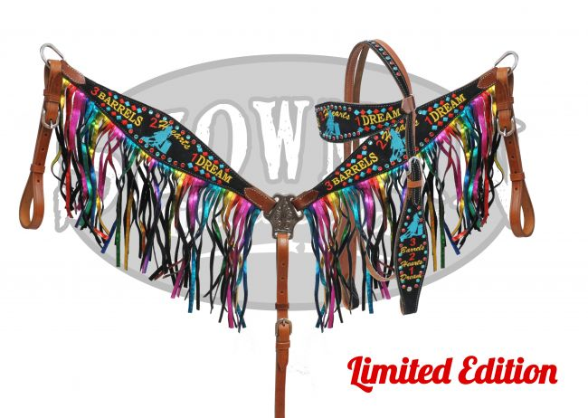 "LIMITED EDITION ""3  Barrels, 2 Hearts, 1 Dream"" tack set-LIMITED EDITION 3  Barrels, 2 Hearts, 1 Dream tack set"