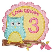 Owl Birthday-owl, birthday