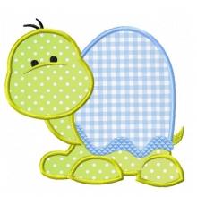 Baby Turtle-baby turtle, turtles,baby turtle